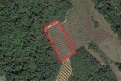 Agricultural land of  ,    square meters - Lote 8964 (Subasta 8964)
