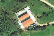 Immagine n2 - Stalla con fienile e terreno agricolo - Asta 8998