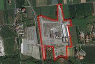 Immagine n0 - Complesso industriale con terreni edificabili ed agricoli - Asta 9065
