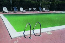 Swimming pool for private use - Lot 9126 (Auction 9126)