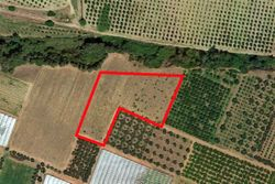 Farmland - Lot 9136 (Auction 9136)