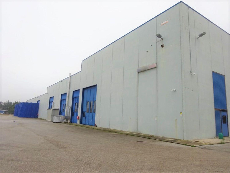 #9142 Opificio industriale con uffici e terreni