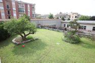 Immagine n0 - Capannone con tetto giardino e piscina - Asta 921