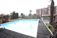 Immagine n2 - Capannone con tetto giardino e piscina - Asta 921