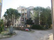 Immagine n8 - Tre appartamenti e tre garage al grezzo avanzato (part 697) - Asta 9265