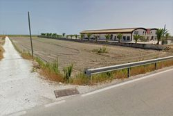 Agricultural land of  ,    sq m near the coast - Lote 9424 (Subasta 9424)