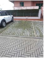 Parking space in a condominium complex - Lot 9446 (Auction 9446)