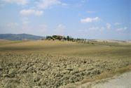 Immagine n7 - Villa monofamiliare con terreno agricolo - Asta 9671