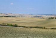 Immagine n8 - Villa monofamiliare con terreno agricolo - Asta 9671