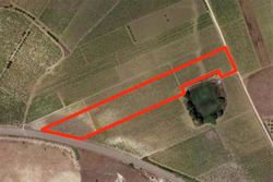 Plot with hillside vineyard - Lot 9679 (Auction 9679)