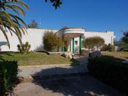 Immagine n5 - Locale commerciale in villaggio polifunzionale (sub 294) - Asta 9717