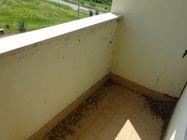 Immagine n3 - Appartamento (sub 22) in complesso a schiera - Asta 976