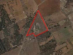 Agricultural land of   ,    sqm - Lote 9781 (Subasta 9781)