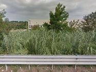 Immagine n6 - Area edificabile con capannone dismesso - Asta 980