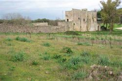 Agricultural complex with buildings - Lot 9835 (Auction 9835)