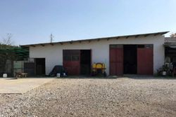 Agricultural use warehouse - Lot 9841 (Auction 9841)