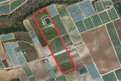 Agricultural land cultivated - Lot 9879 (Auction 9879)