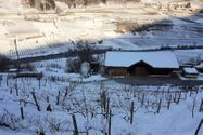 Immagine n13 - Agriturismo in montagna con stalla e terreni - Asta 9881