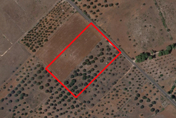 Agricultural land of   ,    square meters - Lot 9901 (Auction 9901)