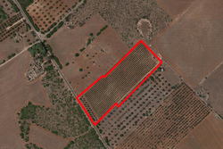 Agricultural land of   ,    square meters - Lot 9902 (Auction 9902)