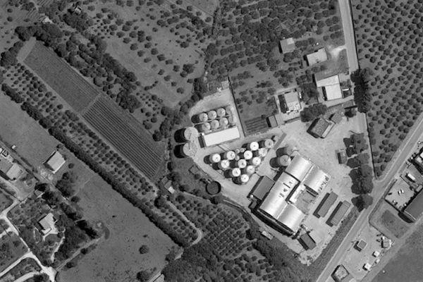 Immagine n1 - Planimetry - Production complex - Asta 9904