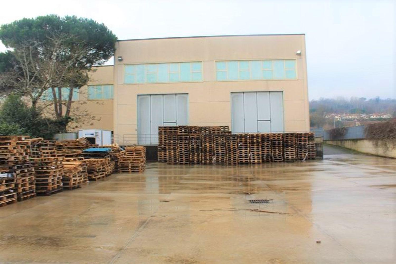 Immagine n. 6 - #9907 Fabbricato produttivo con resede di pertinenza comune