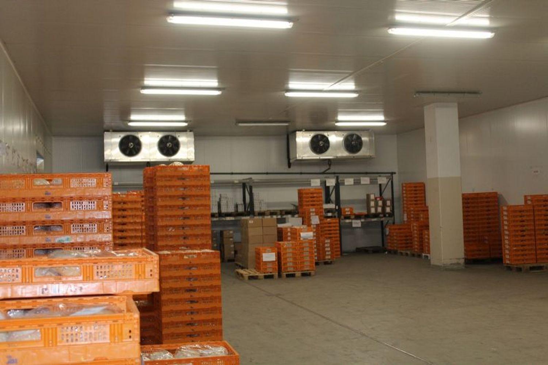 Immagine n. 10 - #9907 Fabbricato produttivo con resede di pertinenza comune