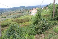 Building land for future subdivision - Lote 9954 (Subasta 9954)