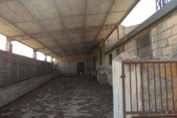 Agricultural building with land - Lot 9967 (Auction 9967)