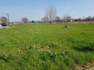Immagine n1 - Terreno edificabile residenziale di 730 mq - Asta 9979