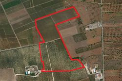 Agricultural land of    ,    square meters - Lot 9993 (Auction 9993)