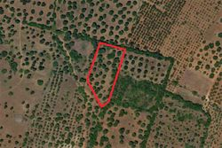 Agricultural land of  ,    sq m - Lot 9999 (Auction 9999)