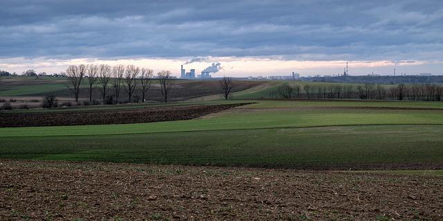 aste terreni agricoli
